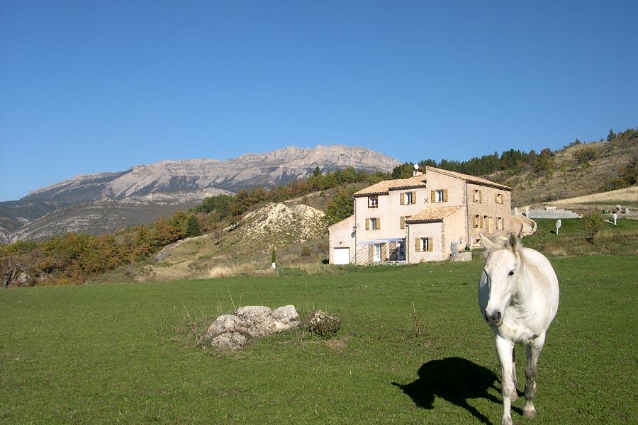 Gite Haute Provence (Durance, Lure, Jabron)