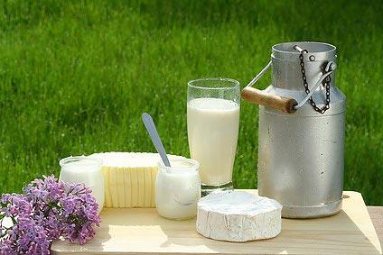Produits laitiers et tous ses dérivés crème fraîche fromages